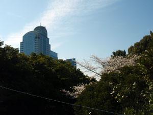 http://www.mackharry.com/~weblog/images/makuhari_2010_0327_01.jpg